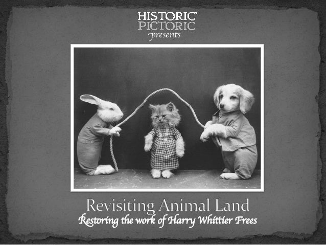 Restoring the work of Harry Whittier Frees  presents