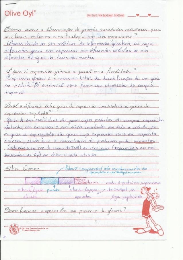 Revisão   bioq.iii