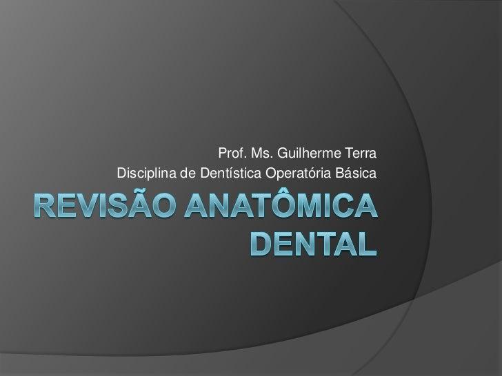 Prof. Ms. Guilherme TerraDisciplina de Dentística Operatória Básica