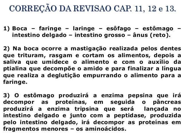 CORREÇÃO DA REVISAO CAP. 11, 12 e 13. 1) Boca – faringe – laringe – esôfago – estômago – intestino delgado – intestino gro...