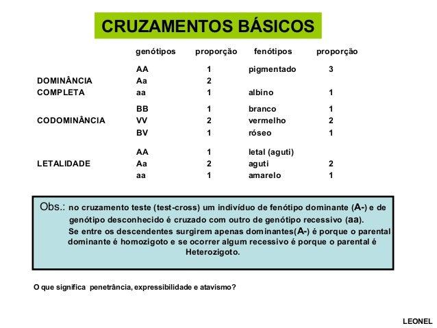 CRUZAMENTOS BÁSICOS genótipos proporção fenótipos proporção DOMINÂNCIA COMPLETA AA Aa aa 1 2 1 pigmentado albino 3 1 CODOM...