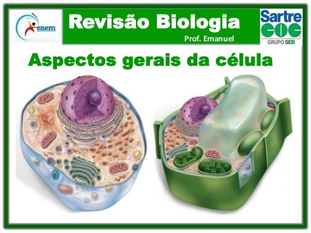 Revisão Biologia Prof. Emanuel  Aspectos gerais da célula