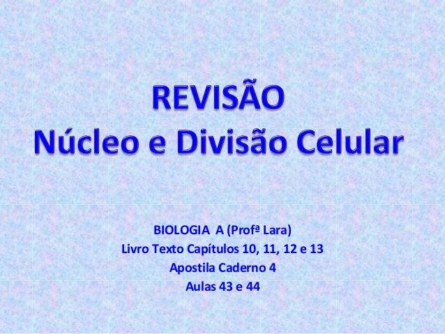 BIOLOGIA A (Profª Lara) Livro Texto Capítulos 10, 11, 12 e 13 Apostila Caderno 4 Aulas 43 e 44