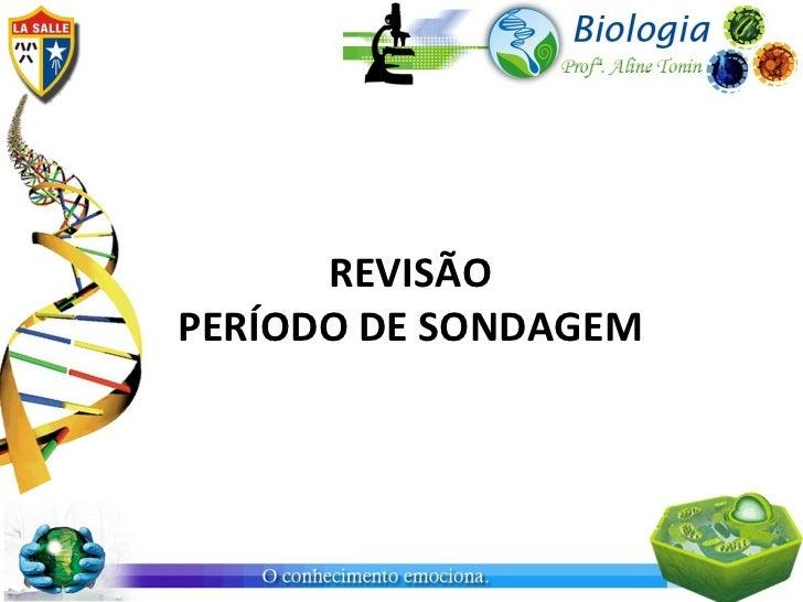 REVISÃOPERÍODO DE SONDAGEM