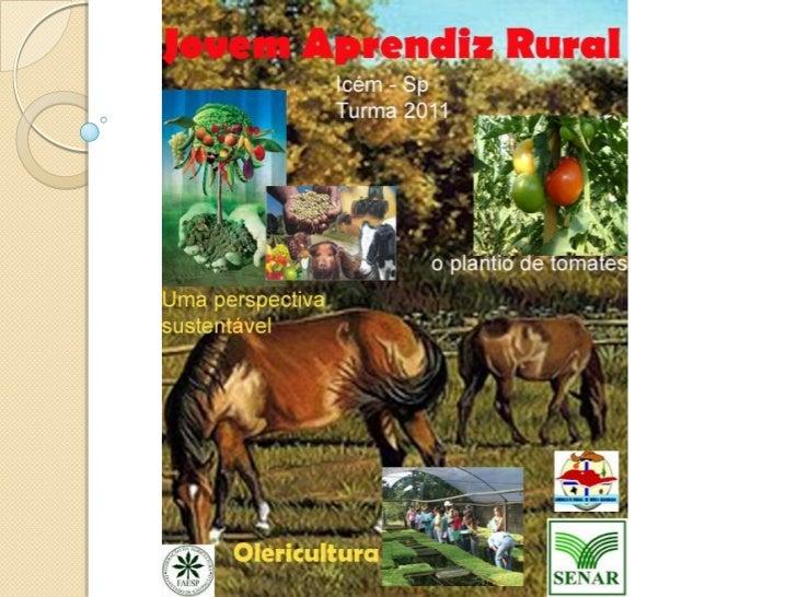    Sumario              Agropecuária no continente Africano , uma perspectiva sustentável.              Agropecuária: Vil...