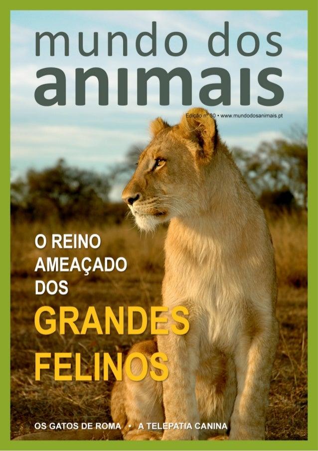 """""""Os olhos de um animal têm o poder de falar uma grande linguagem."""" Martin Buber"""