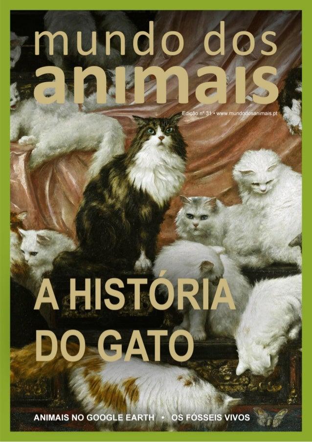 """""""O menor de todos os felinos é uma obra de arte."""" Leonardo da Vinci"""