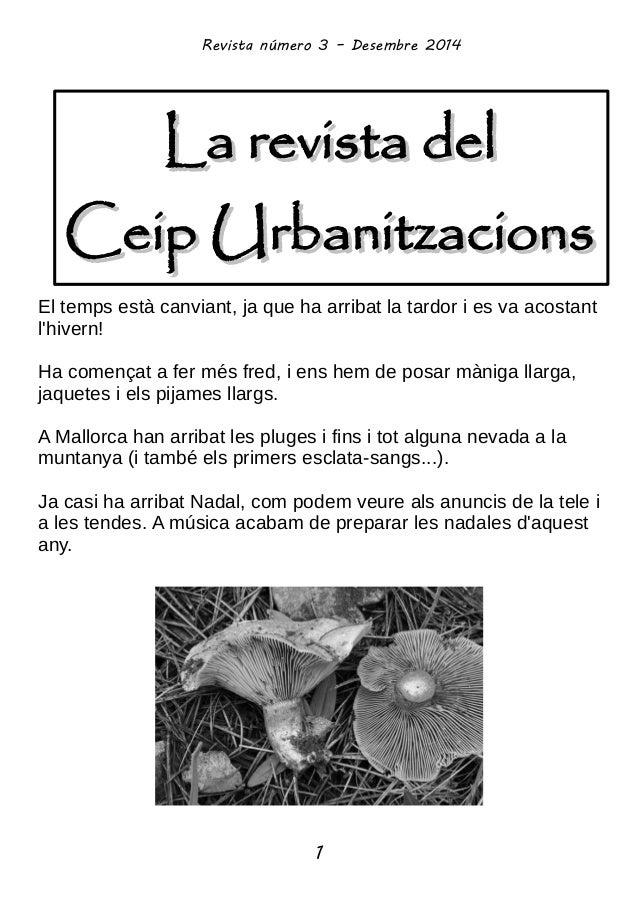 La revista delLa revista del Ceip UrbanitzacionsCeip Urbanitzacions Revista número 3 – Desembre 2014 1 El temps està canvi...