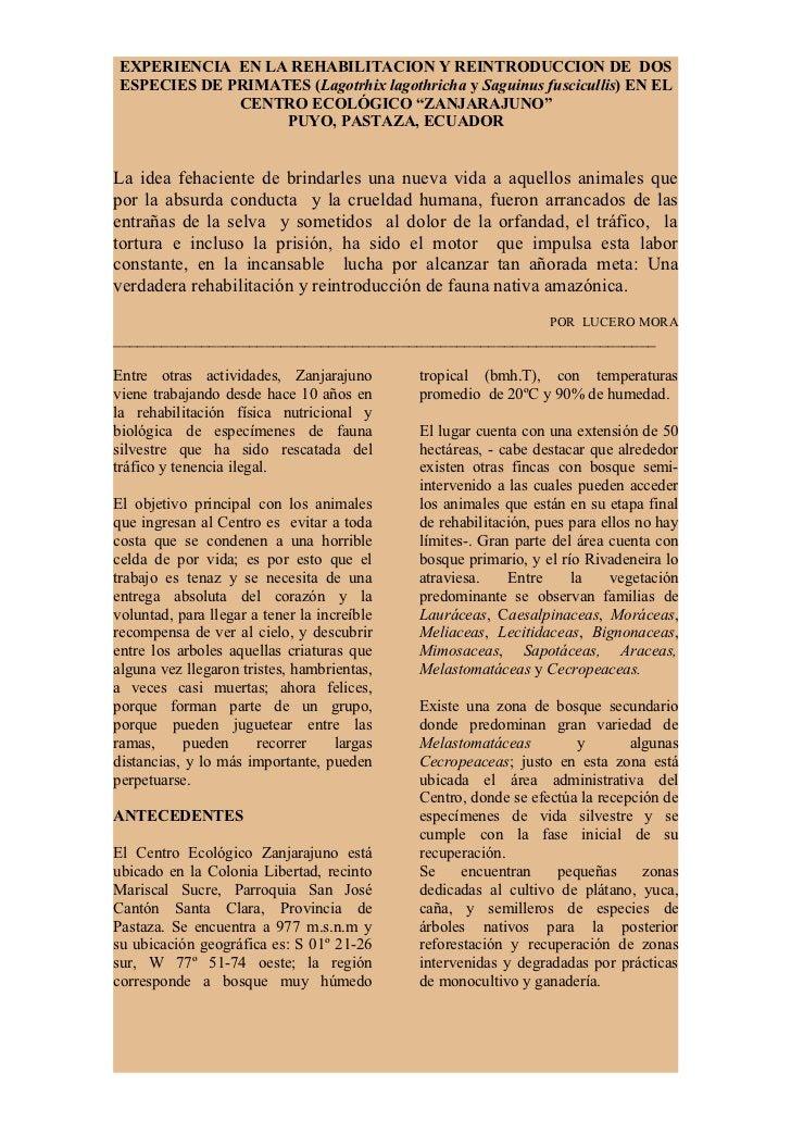 EXPERIENCIA EN LA REHABILITACION Y REINTRODUCCION DE DOS ESPECIES DE PRIMATES (Lagotrhix lagothricha y Saguinus fusciculli...