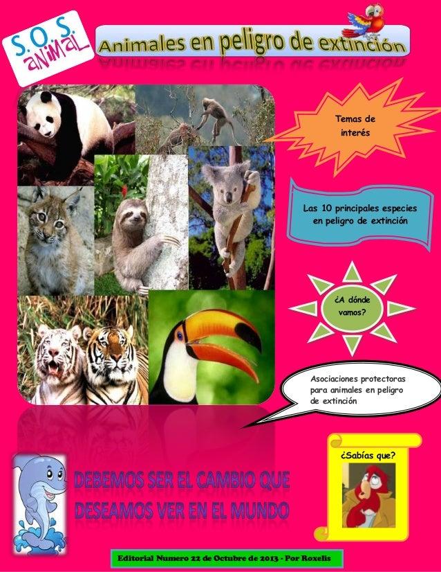 Temas de interés  Las 10 principales especies en peligro de extinción  ¿A dónde vamos?  Asociaciones protectoras para anim...