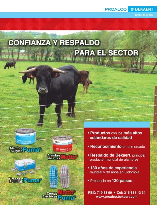 17  FEDERACIÓN COLOMBIANA DE GANADEROS carta fedegÁn N.° 145 puede garantizar exportaciones de carne de 500 millones de d...