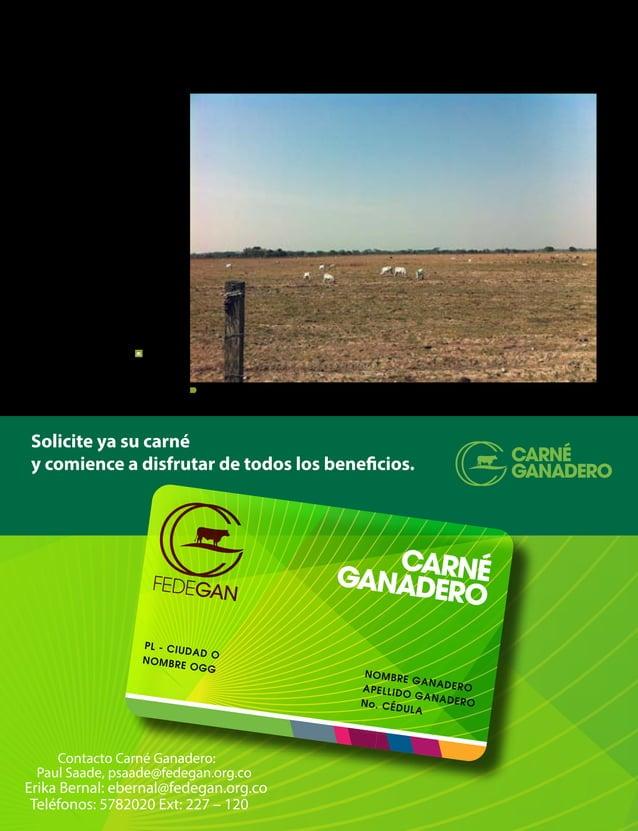 CONTENIDO INFORME ESPECIAL 34° Congreso Nacional de Ganaderos Junta Directiva de la Federación Colombiana de Ganaderos - F...