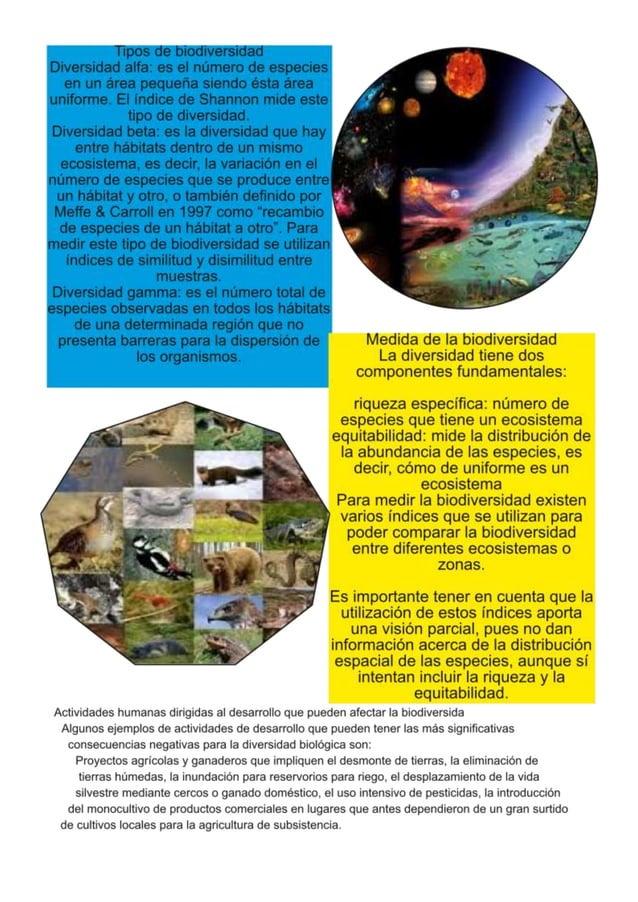 Revista de compu_biodivercidad_[2]