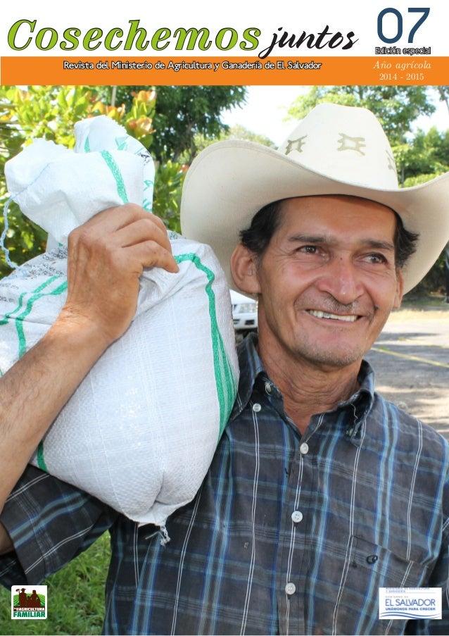 Cosechemos Número 7 - Año 1 Revista del Ministerio de Agricultura y Ganadería de El Salvador 07 Año agrícola 2014 - 2015 E...