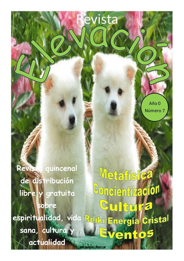Revista Elevación Nº7, Abril 2015, 1ª Quincena.