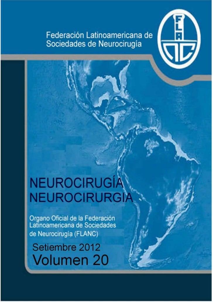 1Neurocirugía-Neurocirurgia / Vol 20 / 2012