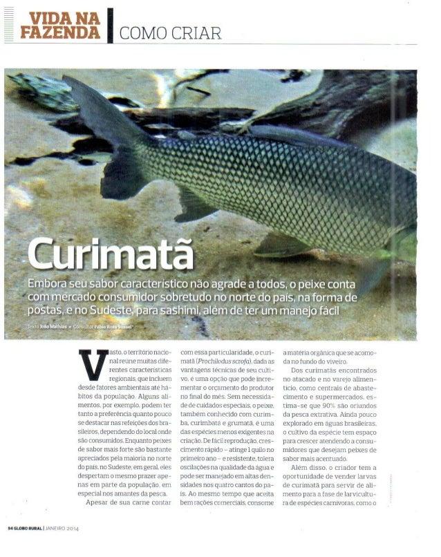 Revista Globo Rural - Como criar