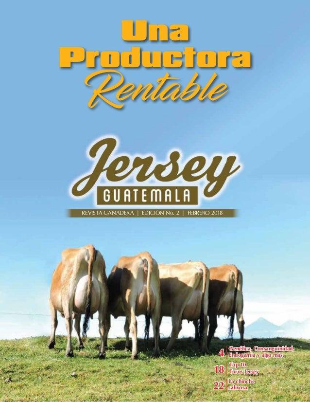Top 10 Toros Jersey Genética, Consanguinidad, Endogamia y algo más. Una Productora Rentable REVISTA GANADERA | EDICIÓN No....