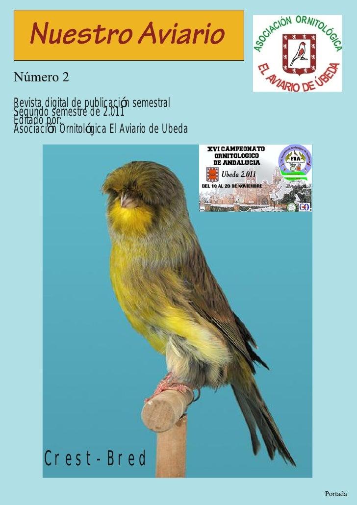 Revista digital de publicación semestralSegundo semestre de 2.011Editado por:Asociación Ornitológica El Aviario de Ubeda  ...