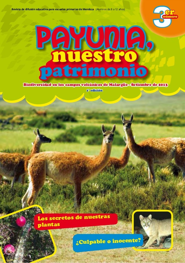 1 nuestronuestro patrimoniopatrimonio Payunia,Payunia,Payunia, nuestronuestro patrimoniopatrimonio Payunia,Payunia,Payunia...