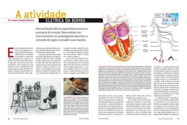 Revista scientific american   coração sem mistérios - parte 2