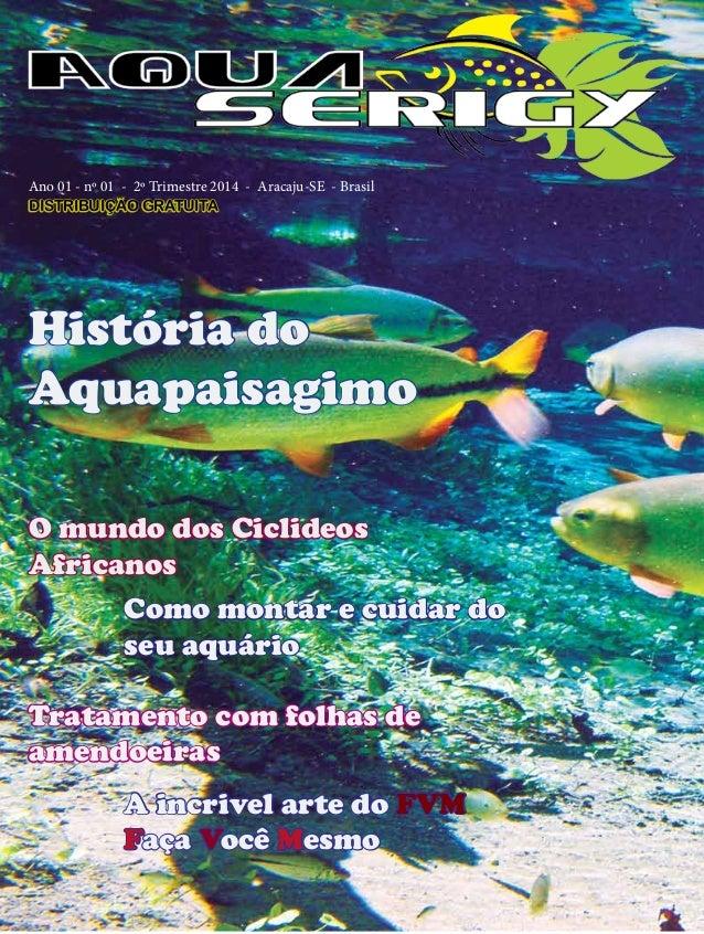 2º Trimestre 2014 - Aqua Serigy História do Aquapaisagimo O mundo dos Ciclideos Africanos Como montar e cuidar do seu aquá...