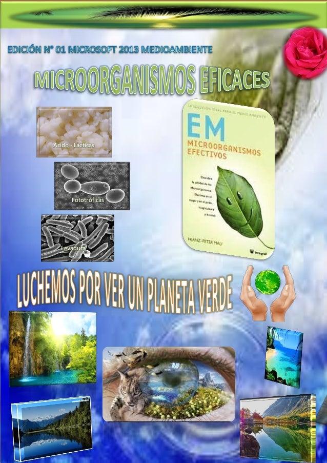 Microorganismos Eficaces  Ácido - Lácticas  1.  Fototróficas  Levadura  Urquiaga Rivero Liz  Página 1