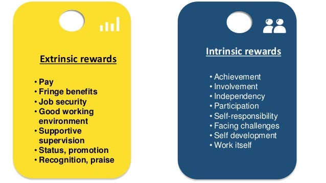 intrinsic extrinsic rewards