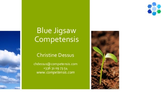 Blue Jigsaw Competensis Christine Dessus chdessus@competensis.com +336 31 09 73 54 www.competensis.com