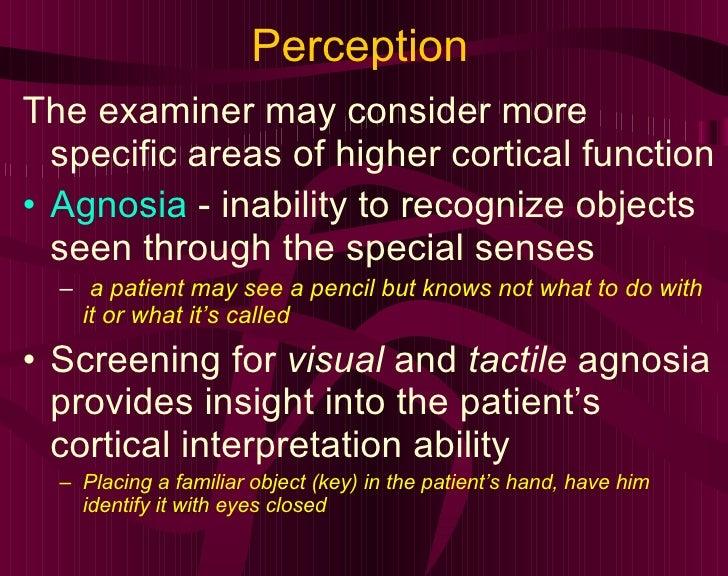 Perception <ul><li>The examiner may consider more specific areas of higher cortical function </li></ul><ul><li>Agnosia  - ...