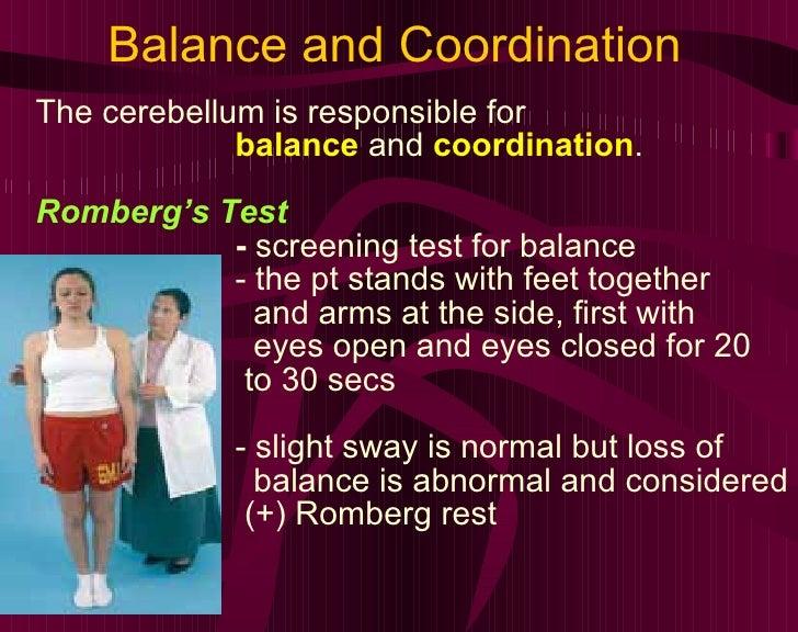 Balance and Coordination <ul><li>The cerebellum is responsible for </li></ul><ul><li>balance  and  coordination .  </li></...