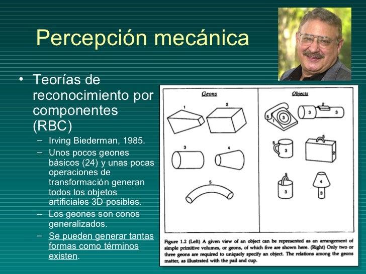 Percepción mecánica <ul><li>Teorías de reconocimiento por componentes (RBC) </li></ul><ul><ul><li>Irving Biederman, 1985. ...