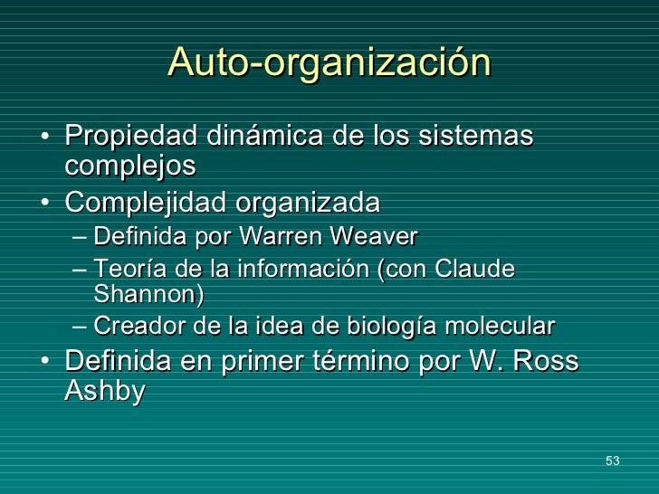 Auto-organización <ul><li>Propiedad dinámica de los sistemas complejos </li></ul><ul><li>Complejidad organizada </li></ul>...