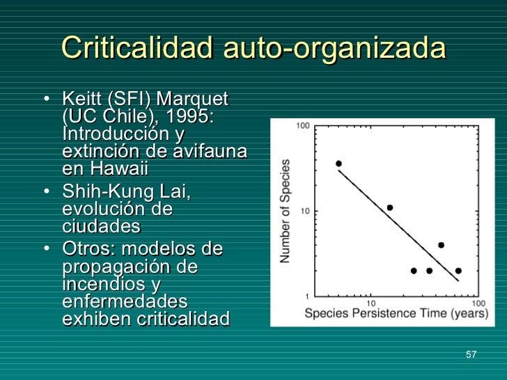 Criticalidad auto-organizada <ul><li>Keitt (SFI) Marquet (UC Chile), 1995: Introducción y extinción de avifauna en Hawaii ...