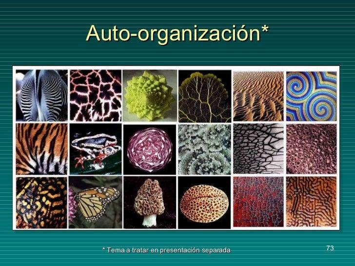 Auto-organización* * Tema a tratar en presentación separada