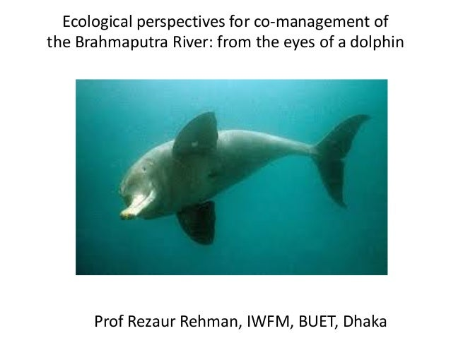 Ecological perspectives for co-management of the Brahmaputra River: from the eyes of a dolphin  Prof Rezaur Rehman, IWFM, ...