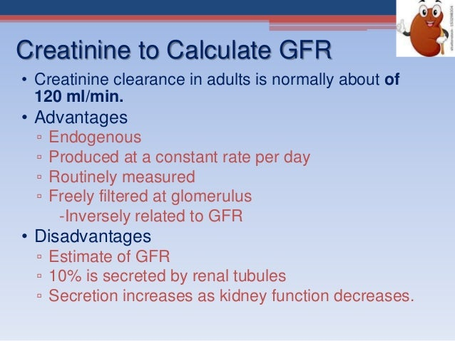 disadvantages of creatine