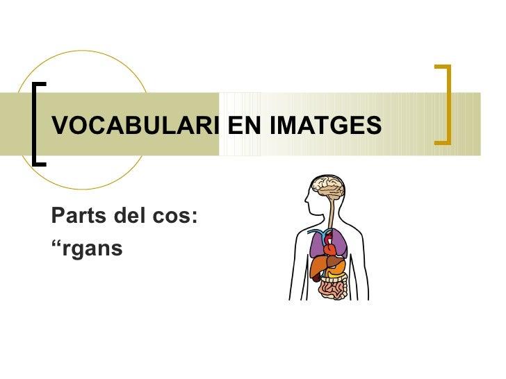 VOCABULARI EN IMATGES Parts del cos:  Òrgans