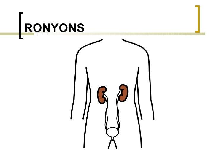 RONYONS