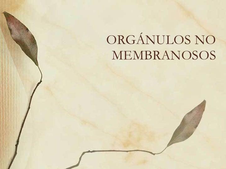 ORGÁNULOS NO MEMBRANOSOS