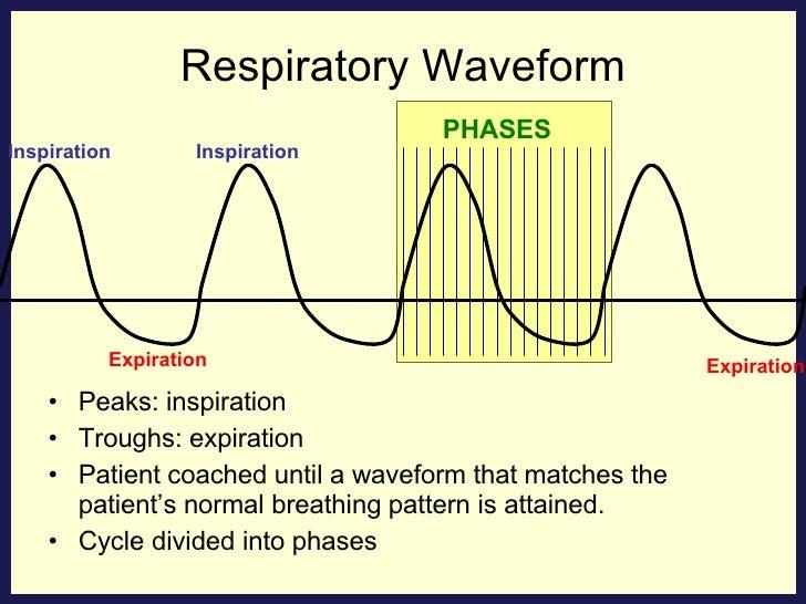 Respiratory Waveform <ul><li>Peaks: inspiration </li></ul><ul><li>Troughs: expiration </li></ul><ul><li>Patient coached un...