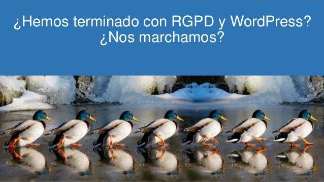 ¿Hemos terminado con RGPD y WordPress? ¿Nos marchamos?