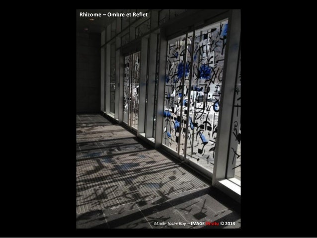 Rhizome - Ombre et Reflet (Inédit) Slide 2