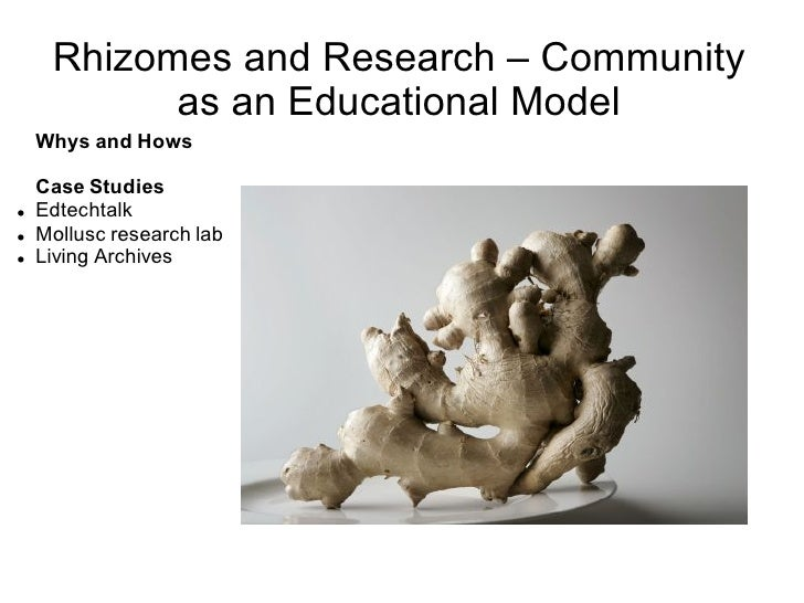 Rhizomes and Research – Community as an Educational Model