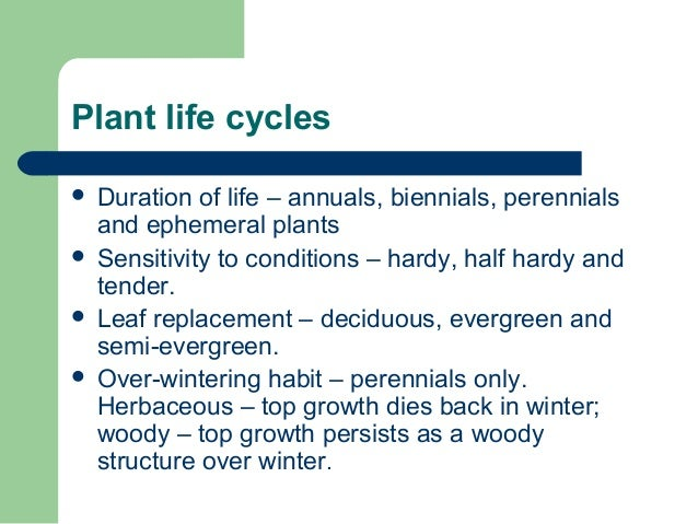 Plant life cycles  Duration of life – annuals, biennials, perennials and ephemeral plants  Sensitivity to conditions – h...
