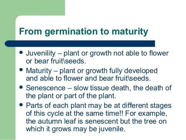 From germination to maturity  Juvenility – plant or growth not able to flower or bear fruitseeds.  Maturity – plant or g...