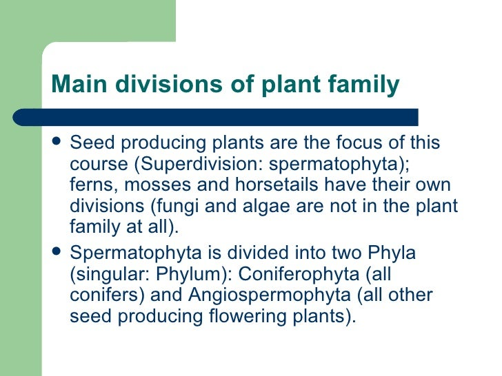 Main divisions of plant family <ul><li>Seed producing plants are the focus of this course (Superdivision: spermatophyta); ...