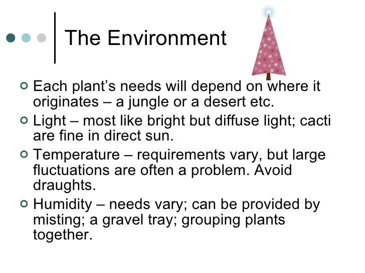 The Environment <ul><li>Each plant's needs will depend on where it originates – a jungle or a desert etc. </li></ul><ul><l...