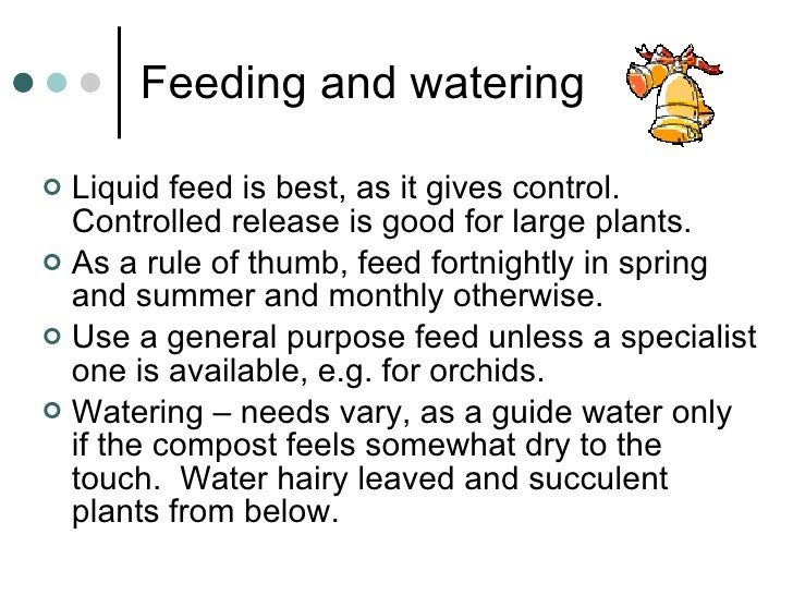 Feeding and watering  <ul><li>Liquid feed is best, as it gives control.  Controlled release is good for large plants. </li...
