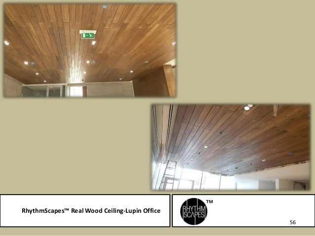 RhythmScapesTM Real Wood Ceiling Lupin Office 56